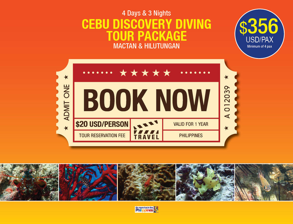4D/3N CEBU DISCOVERY DIVING TOUR PACKAGE MACTAN & HILUTUNGAN $356 USD/PAX - AREE TRAVEL & TOURS