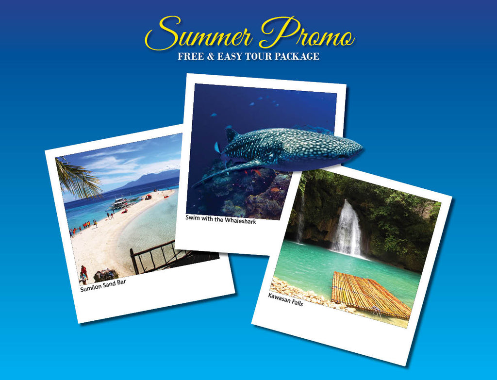 3D/2N SOUTH CEBU TOUR ADVENTURE  OPTION 4 ( WHALESHARK, SUMILON SAND BAR, KAWASAN FALLS ) - AREE TRAVEL & TOURS