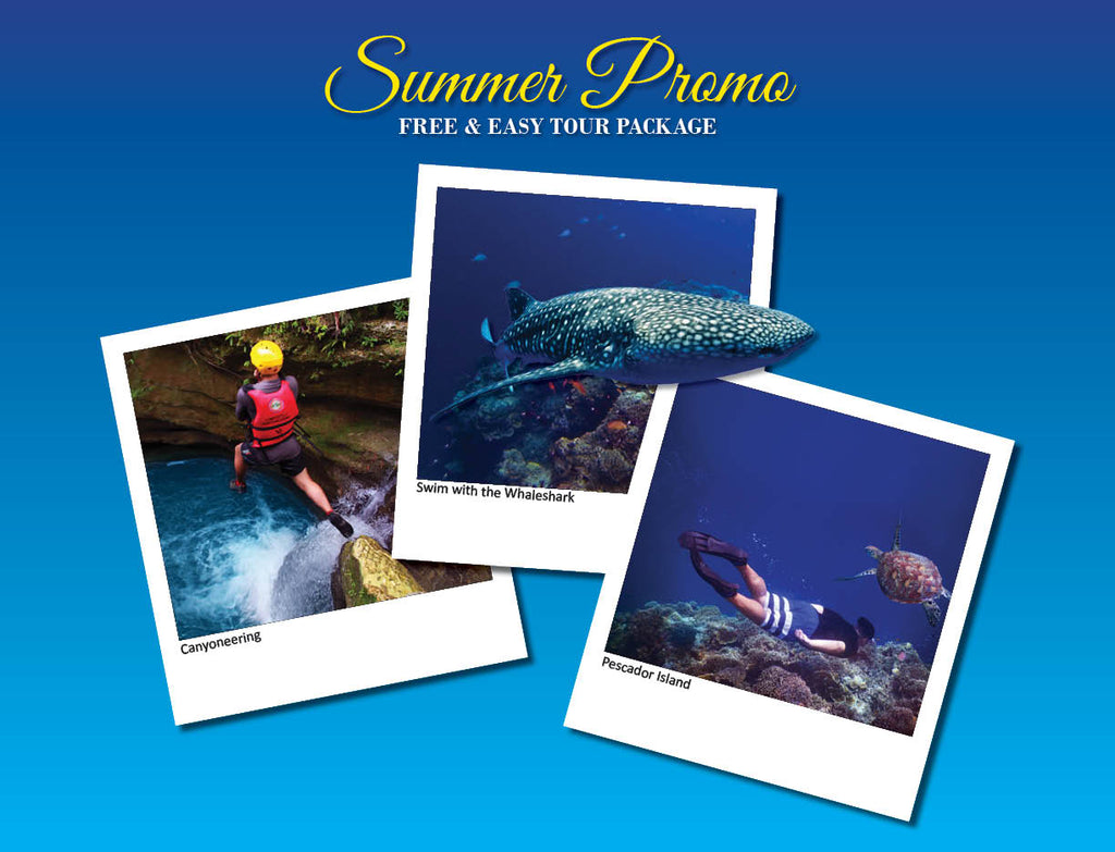 3D/2N SOUTH CEBU TOUR  ADVENTURE OPTION 5 ( WHALESHARK, CANYONEERING, PESCADOR MOALBOAL )
