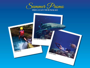 3D/2N SOUTH CEBU TOUR  ADVENTURE OPTION 5 ( WHALESHARK, CANYONEERING, PESCADOR MOALBOAL ) - AREE TRAVEL & TOURS