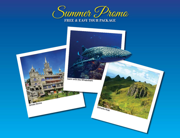 3D/2N SOUTH CEBU TOUR ADVENTURE OPTION 7 ( WHALESHARK, TUMALOG, OSMEÑA PEAK, SIMALA )