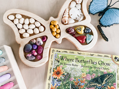 Butterfly Loose Parts Tray