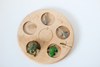 The life cycle of a frog wooden activity board.