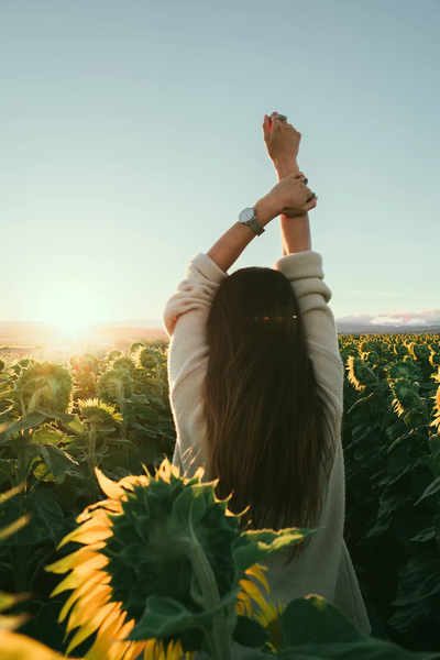 A woman stretches one arm up, amid sunflowers as tall as she is