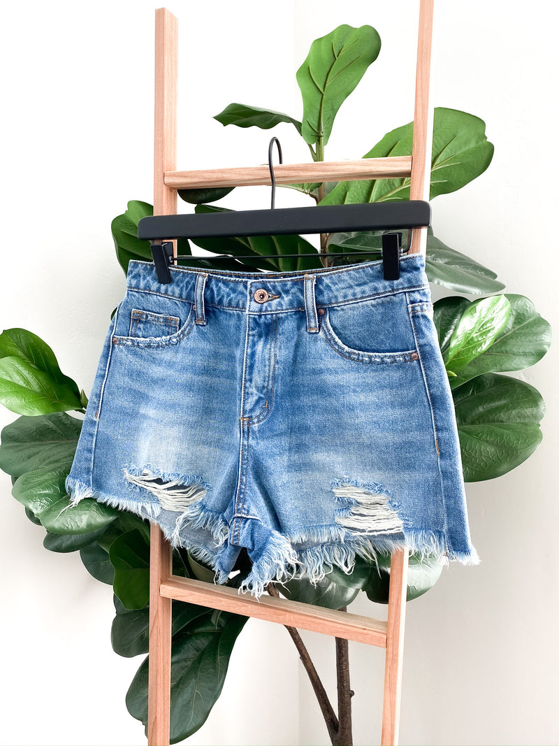 Santa Cruz Distressed Shorts