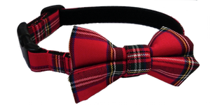 Royal Stewart Tartan Collar and Bow Tie attached