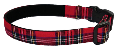 Royal Stewart Tartan Collar - lined with soft velvet ribbon