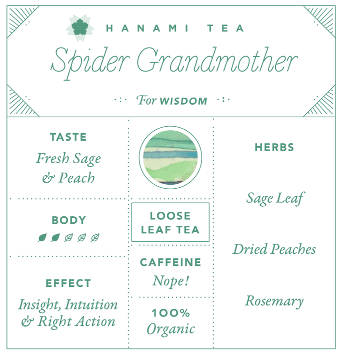 Spider Grandmother