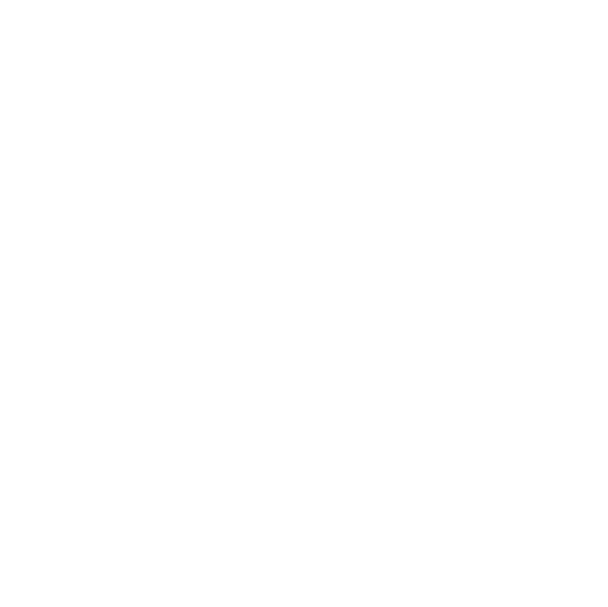 The Topponcino Company