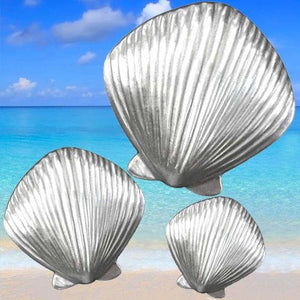 Scallop Shell Cabinet Knob Collection