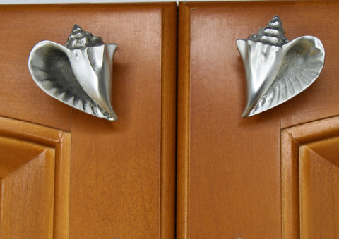 conch shell cabinet knob set