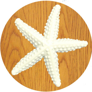 Large starfish knob - white