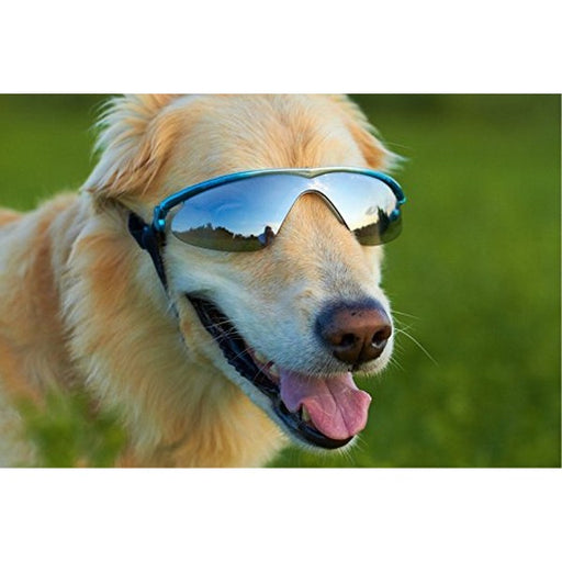 Blue Gradient With Smoke Lenses K9 Optix Rubber Sunglasses For Dog, S