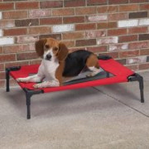 Crimson Pet Cot With Mesh Panel, Small