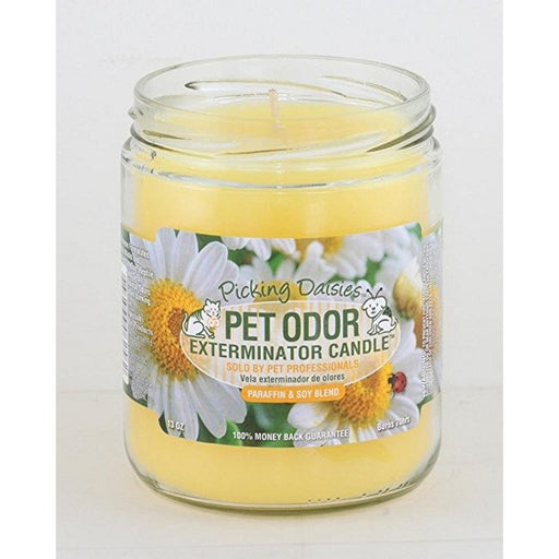Pet Odor Exterminator Candle Picking Daisies Scent, 13 Oz