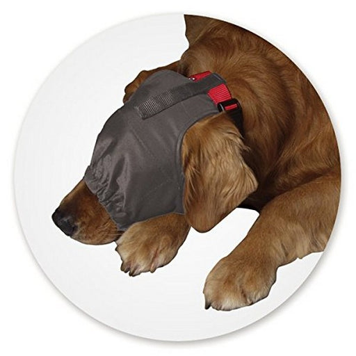 Calming Cap For Dogs, Medium