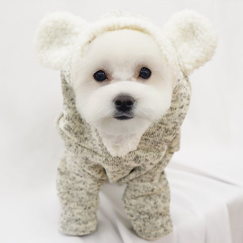 Cute Grey Bear Full body knitted Sweater for Small dogs