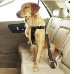 Guardian Gear Ride Right Classic Car Harness
