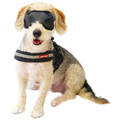 Lightweight Mesh Eye wear for Dogs - UV Filtered Protection