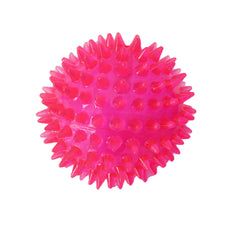 Squeaky Blue Spiky Ball Dog Toy