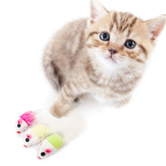 Kitten with three piece mouse cat toy, Green, pink, and yellow mouse cat toy for kittens and cats