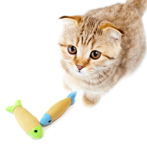 One pack of 2 Piece Soft Fish Plush Cat toys for Cats and Kittens, Beige with green and Beige with Blue Colors Model with Kitty Playing