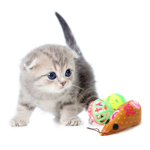 Size reference kitten with 3 piece cat toy, 3 piece cat toy perfect for playful kittens and cats