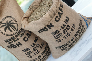 100% Arabica SPECIALTY SHG - La Paz WHOLESALE