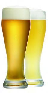 Pilsner Glass 2 pc PS1070343