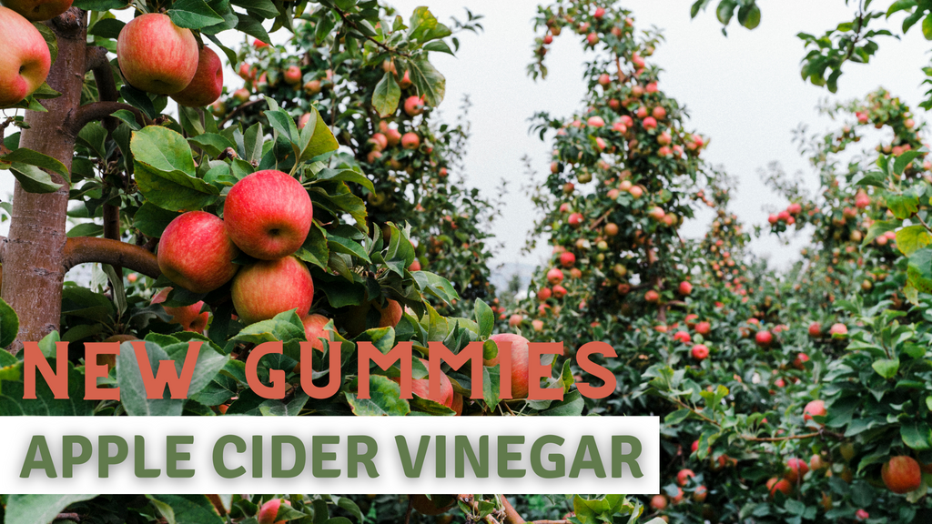 Apple Cider Vinegar Gummies - Bextera Nutrition
