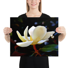 Load image into Gallery viewer, Magnolia in Flight Poster