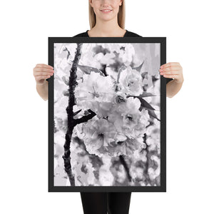 Blossoms in Black and White Framed Poster *UNSigned