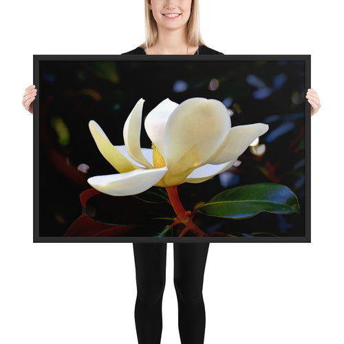 Magnolia in Flight Framed poster