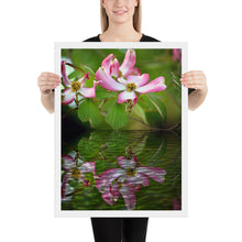 Load image into Gallery viewer, Dogwood Tree Blossom in Reflection Framed poster