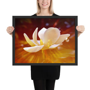 Golden Magnolia Framed Poster
