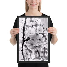 Load image into Gallery viewer, Blossoms in Black and White Framed Poster *UNSigned
