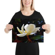Load image into Gallery viewer, Vivid Magnolia Poster