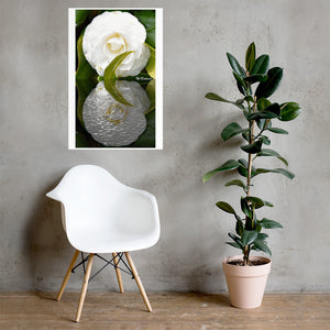 Gardenia Reflections (WHITE) Poster