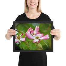 Load image into Gallery viewer, Dogwood Tree Blossom Framed poster