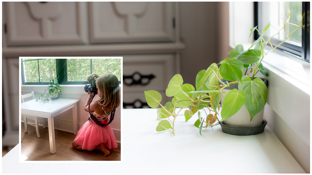 Download 10 Tips for Teaching Your Child to Take Photos — Legacy Kids