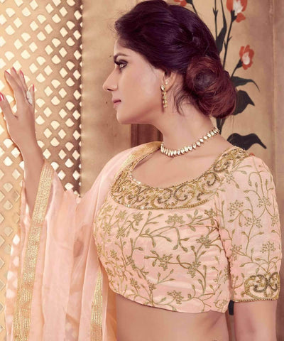 products/Lehenga_Choli_73441-2.jpg