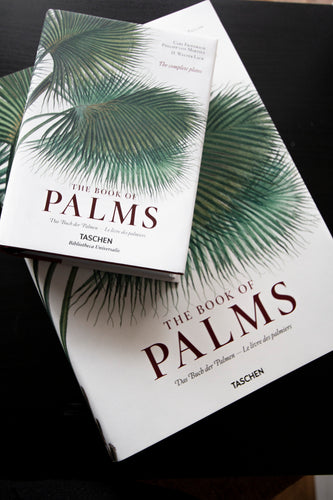 BOK - The Book of Palms XL