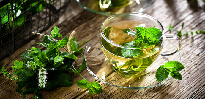 5 Herbs That Help Increase Collagen Production