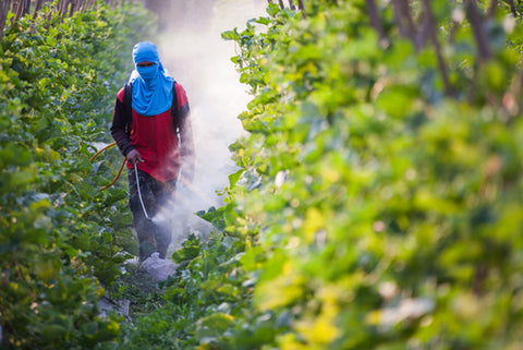 NativePath: Pesticides as a main source of toxins