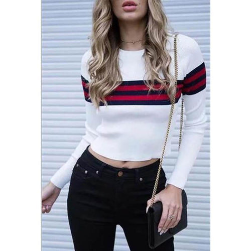 Fashion Round Collar Slim Fit Knit Blouse