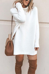 High Neck  Plain  Long Sleeve Sweaters