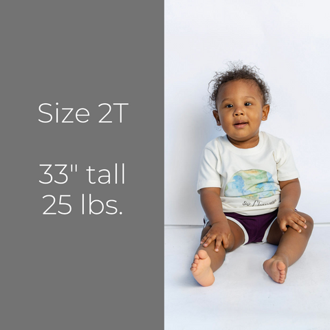 Printed Tee - Size 2T
