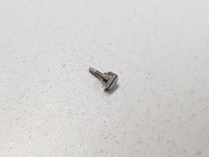 CASIO SHORT BAND SCREW (10475773) - G-SHOCK