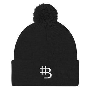 Alternative Bitcoin Logo - Pom Pom Knit Cap - Remlor Art