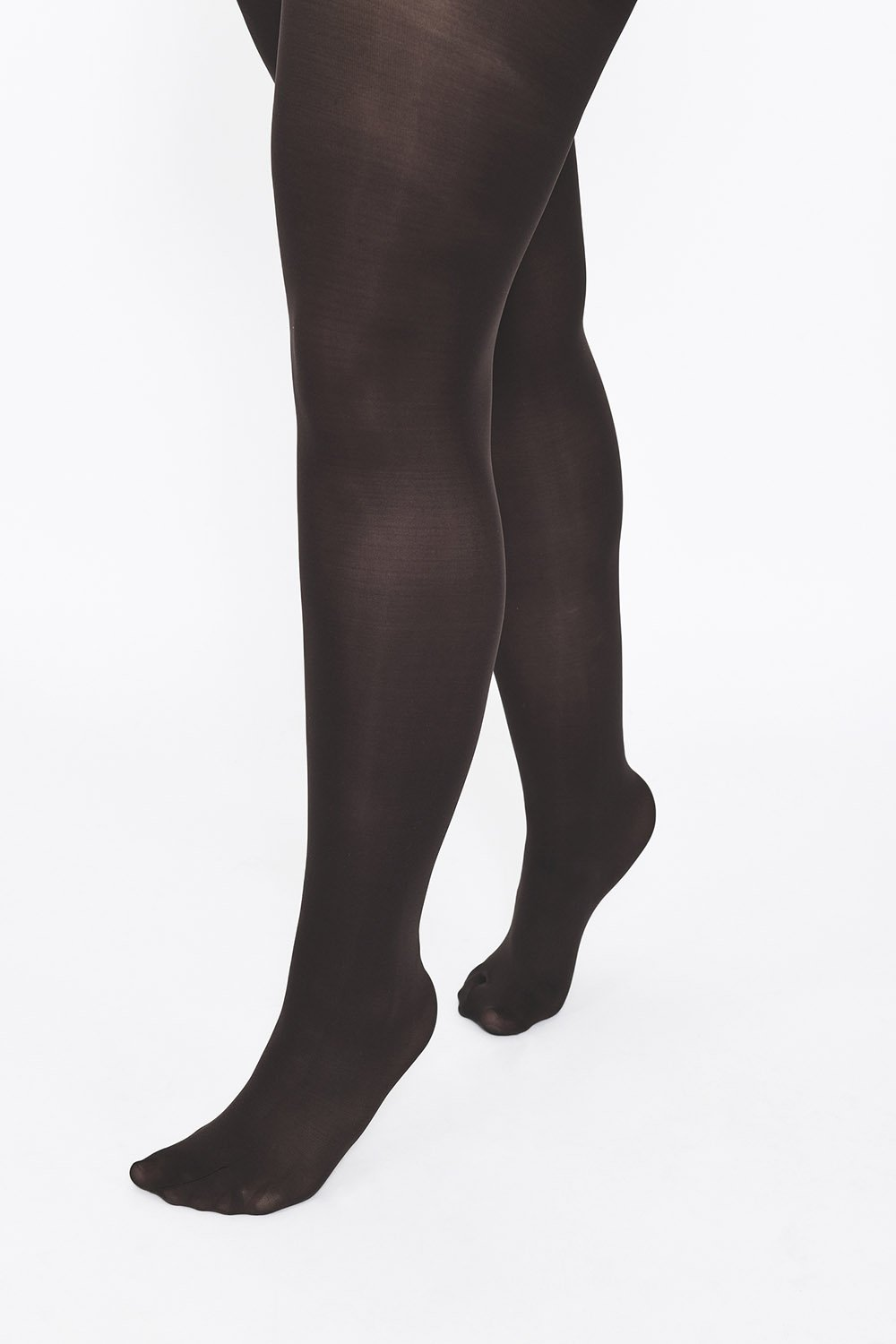 Plus Size Hazel 100 Denier Tights